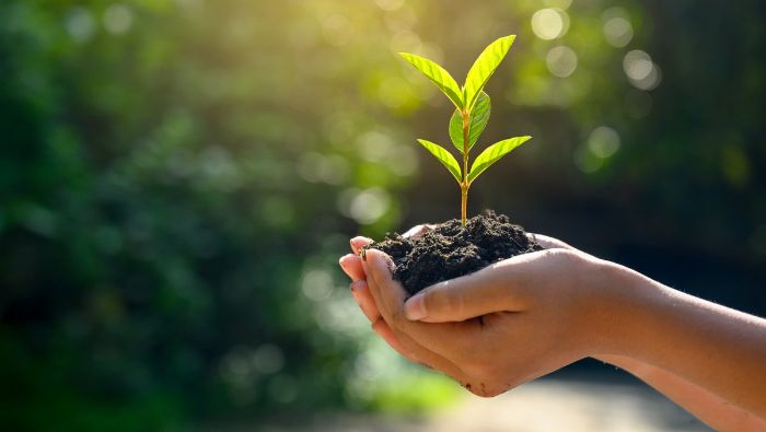 Chế độ Eco thân thiện với môi trường
